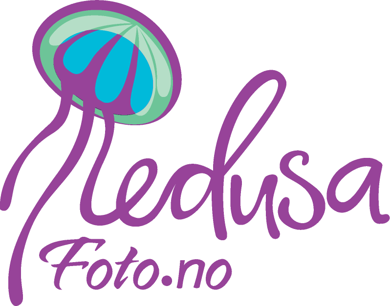Logo for Medusafoto